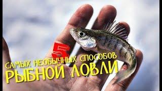 Ловля рыбы необычным способом