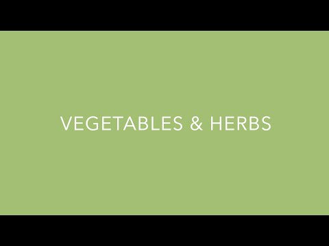 HandPicked Vegetables Collection from PanAmerican Seed thumbnail