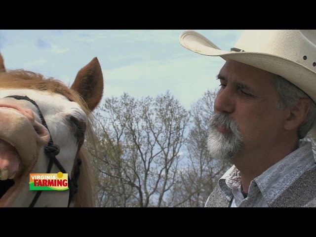 Virginia Farming: Tom Moates – Equine author