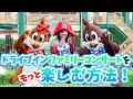 【イベント】歌う海賊団ッ!ドライブインファミリーコンサートをもっと楽しむ方法