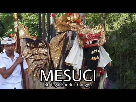 Mesuci-Br-Tegalgundul-Desa-Tibubeneng.html