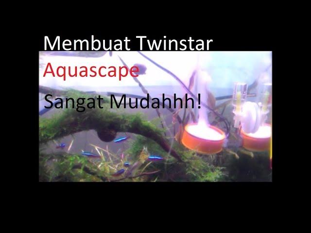 Membuat Twinstar Aquascape Sendiri dengan Mudah menggunakan Seal Tape   Scaper's Vlog