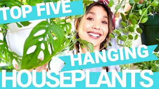 Top Five Favorite Houseplants | Hanging Houseplants