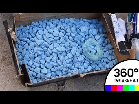 МДМА и амфетамин: в Подмосковье накрыли крупную нарколабораторию
