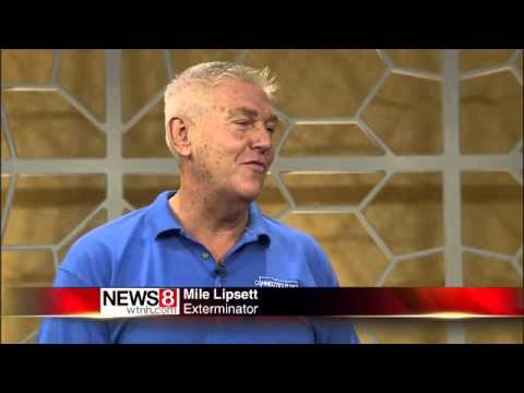 Mike Lipsett talks rats and mice. If you have them, he tells you how to get them out. He also explains why rats and humans live together and if rats really are dangerous.