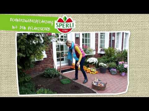 SPERLI - So pflanzen Sie Blumenzwiebeln mit dem Pflanzkorb