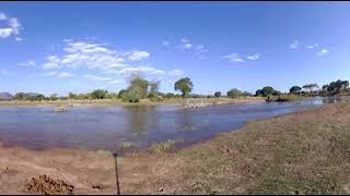 360 Video of Wildlife Film trip - Photos of Africa VR Safari
