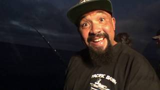 Pacific Dawn Fisherman's Landing Limit Blue Fin Tuna Cortez Bank Rise Against Ready to fall