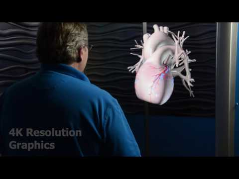 3D4K Holographical Reality offers unprecedented visual imagery