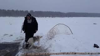 Рыбалка на севере республика коми