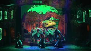 Little Shop of Horrors Review | Palace Theatre | Manchester