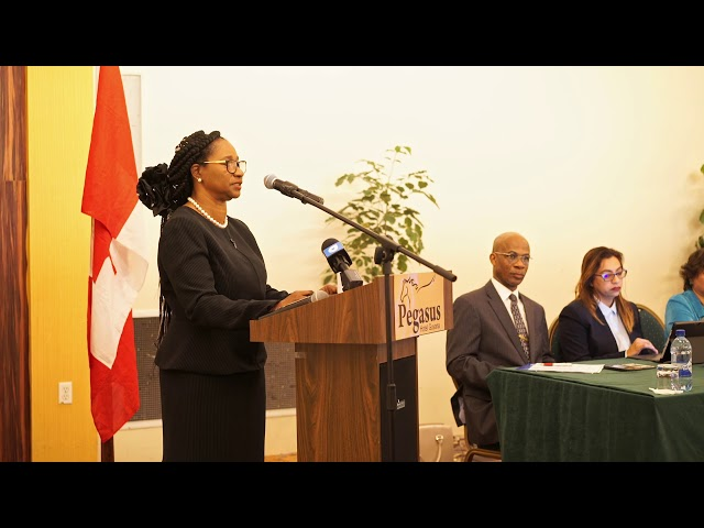 Handing over ceremony of 10 Liberty systems to the judiciary of Guyana - Summary