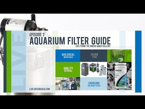 Episode 2: Aquarium Filter Guide