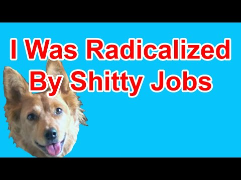 Radicalized by Work Experiences - Radical Reviewer (ft. Kathrin)