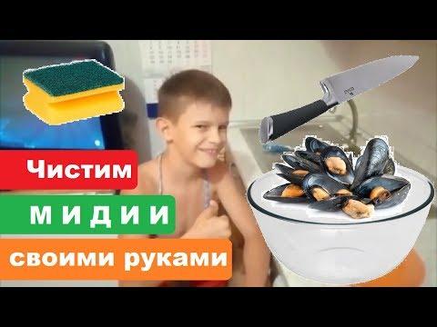 Как правильно почистить мидии в домашних условиях своими руками