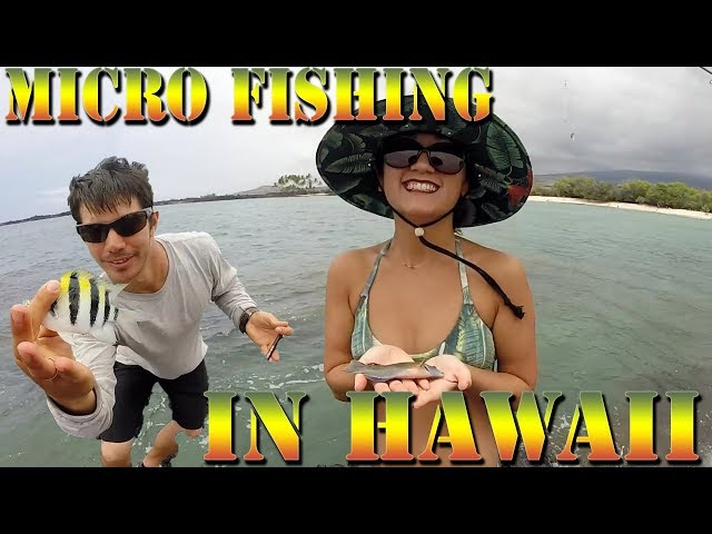 Micro fishing In Hawaii For Small Bait Fish - Aura and Danny D Bringing In the Fish - BODS 39
