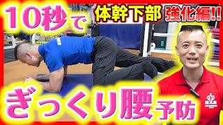 【簡単 10秒】ぎっくり腰予防 プランクで下半身を強化!〜体幹トレーニング下部編〜