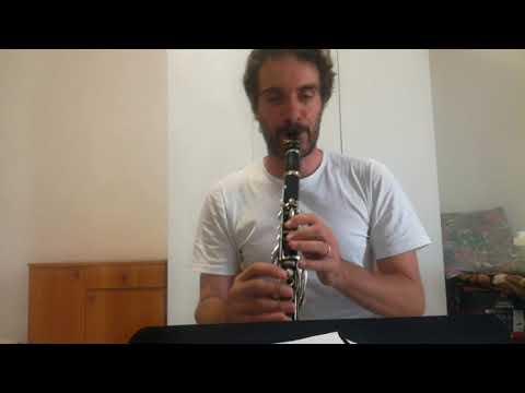 """Valzer """" IL PASSERO """" Musica di Stefano Gattano"""