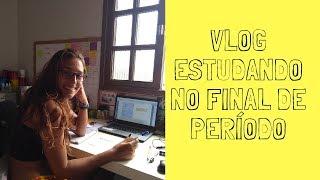 STUDY VLOG || ESTUDANDO NO FINAL DE PERÍODO