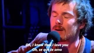 Damien Rice   The Animals Where Gone [Subtitulada al español]