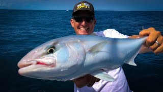 Amberjack {Catch Clean Cook} Tasty Tuesday