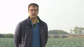 Jean-Michel Morand