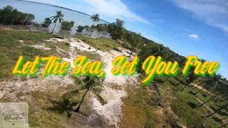 Cinematic and FPV Freestyle | Drone | Relaxing Music With Nature Sounds | Tropical Beach