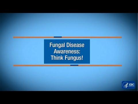 Fungal Disease Awareness: Think Fungus!