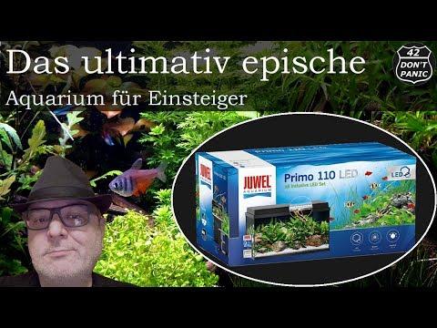 Das ultimativ epische Aquarium für Einsteiger - Juwel Primo 110 LED