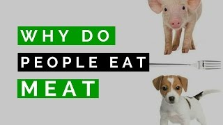 Why Do We Love Dogs and Eat Pigs?