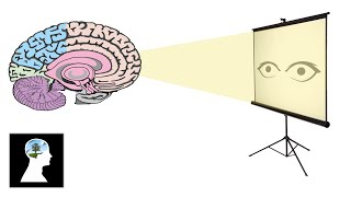 """סרטון נחמד שמסביר על התודעה, מבחינת """"מתבונן"""" והחוויות."""