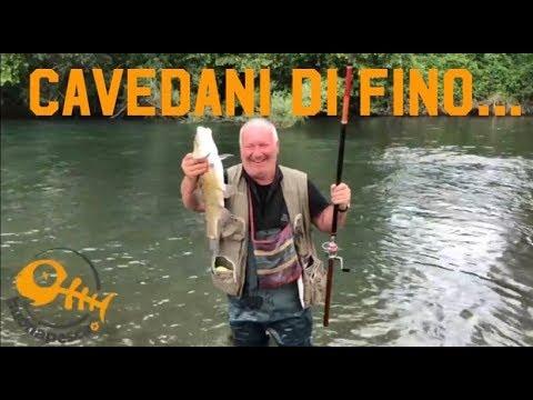 La pesca sul corso vecchio di una gomma