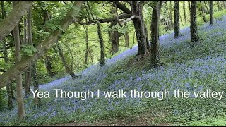 Walking through the Valley - Psalm 23
