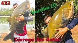Os verdões do Córrego das Antas - Fishingtur na TV 432