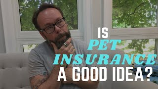 Is Pet Insurance Worth It? A Veterinarians Advice