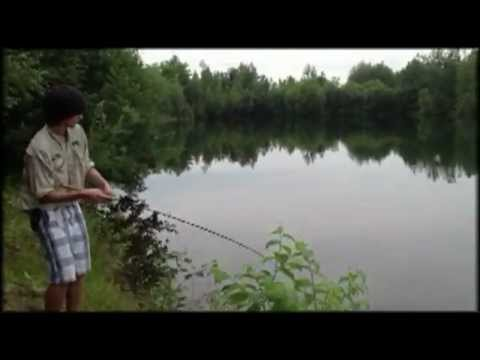 Wacky Rig Fishing Smallmouth Bass on a Secret Pond