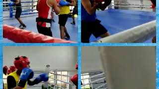 IIS SPARRING DRILLS