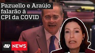 Renan Calheiros e senadores estão 'cavando prova' para incriminar governo, avalia Cristina Graeml