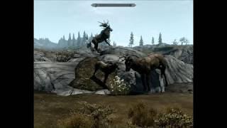 Skyrim mod Skytest Realistic Animals (NÃO TESTADO) para Xbox 360 RGH/JTAG