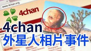 外國討論區 4chan 流出真正的蜥蜴人照片 | 都市傳說 | PowPow