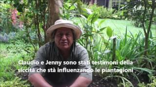 Messaggio da Mariano Pichekiix Guida Spirituale Maya Guatemala Maggio 2017