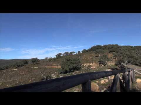 """Observatoire d""""oiseaux nécrophages du Cortes de la Frontera"""