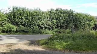 preview picture of video 'The Ridgeway Wendover to Tring Station Chiltern Walk 13 September 2012'