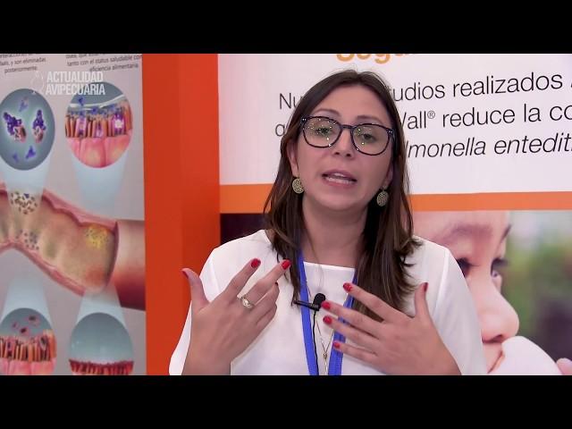 Dra. Melina Bonato detalla resultados de investigación sobre ImmunoWall® en gallinas ponedoras