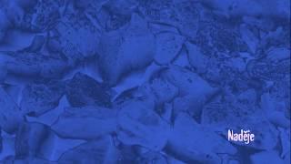 Video Očistec záznam z finále koncertu (přednes, hudba, animace)