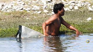 Pescador Pescó con red Grandes TILAPIAS(!) de Laguna Pequeña