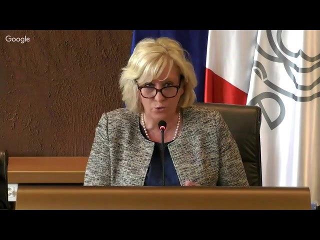 Séance publique de l'Assemblée départementale du lundi 29 avril 2019