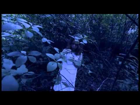 "Caroline Herring - ""Fireflies"" - CAMILLA"