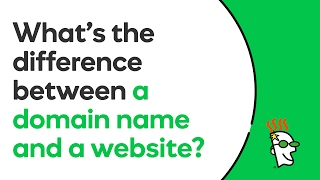 Who is domain website