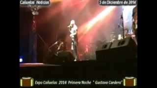 preview picture of video 'Cañuelas Noticias Gustavo Cordera Expo Cañuelas 2014'